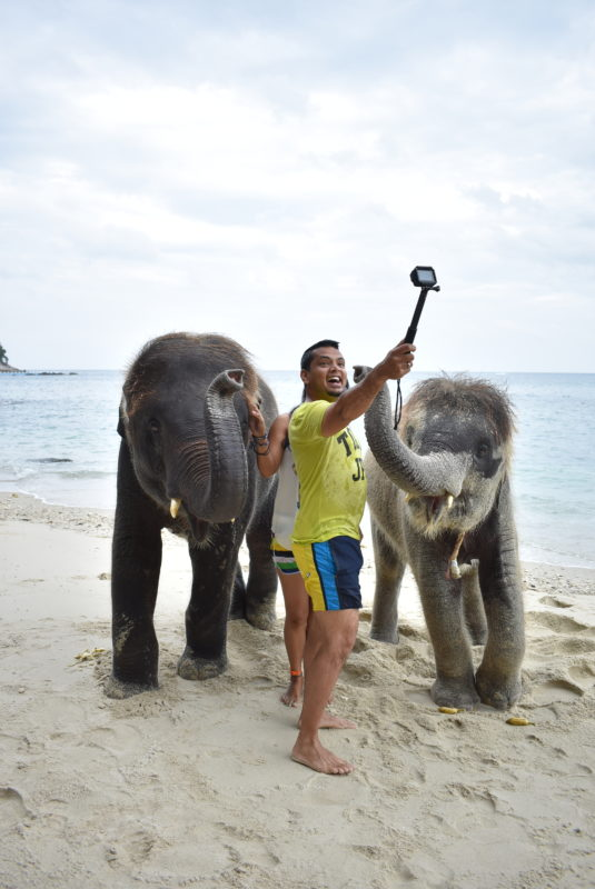 Swimming with baby elephants in phuket thailand
