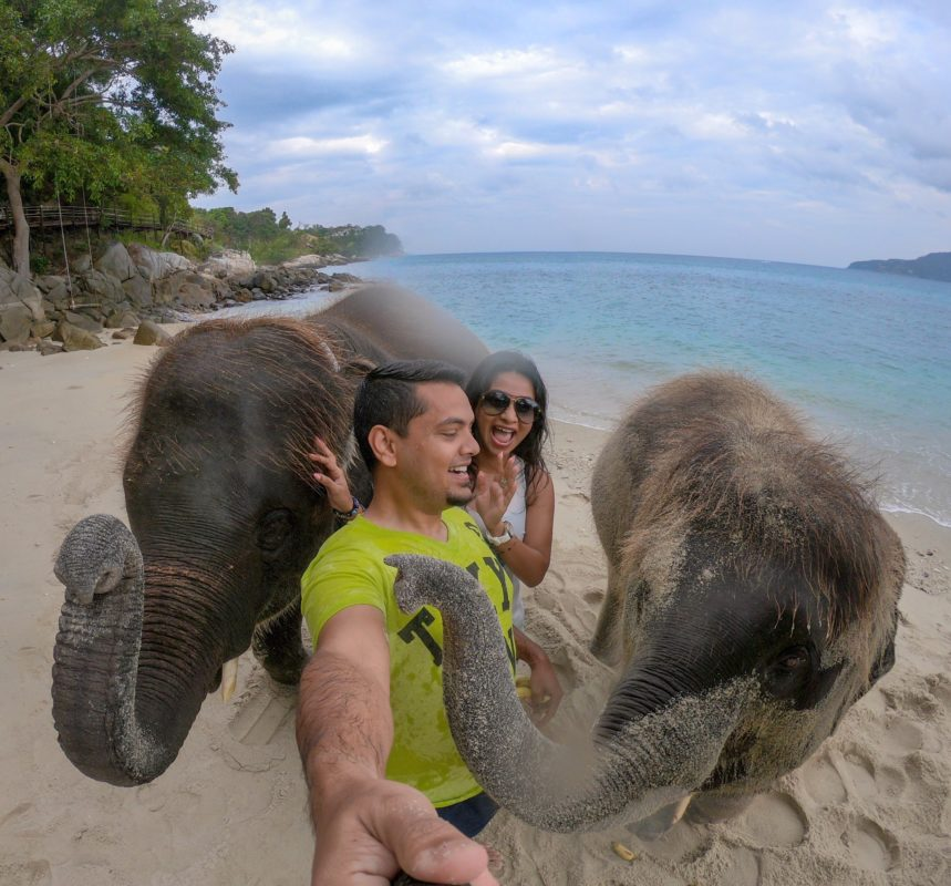 Swimming with baby elephants in phuket